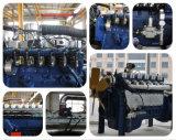 El motor de Gas Natural (HL6126GNC) para el generador