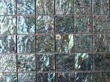 Abalone Shell Shell de papel de malla de azulejos de mosaico mural