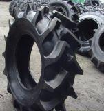 [أغريكلتثرل تركتور] إطار العجلة حراجة إطار العجلة [35.5ل-32] [ر1]