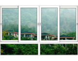 Finestra di vetro di alluminio del portello con doppio vetro per la villa (JBD-S11)