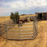 호주 6은 1.8m *2.1m 가축 말 담 위원회 또는 가축 위원회를 가로장으로 막는다