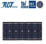 Зеленая панель солнечных батарей продукта 30W Mono с хорошим ценой