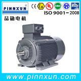 IEC Motor Three Phase Electric Mining Motor com CE Certificate