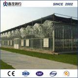 야채 정원을%s 중국 공급자 저가 유리제 온실