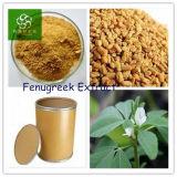 Fenogreco extracto, extracto de semillas de fenogreco en polvo, el semen Trigonellae