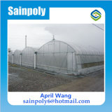 Hot Sale Plastic Film Mulit Span Agricultural Greenhouse