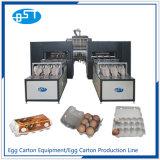 Reciclaje de residuos de papel cartón de huevos utiliza la máquina (CE5400)