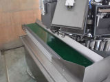 Grosser Beutel-Drehverpackungsmaschine