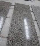 Новой Каледонии гранитные плиты для кухни и ванной комнатой/стены и пол