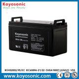 Batería de la UPS del almacenaje del AGM de la larga vida 12V 120ah VRLA