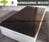 contre-plaqué imperméable à l'eau de faisceau en bois dur de 18mm pour la construction