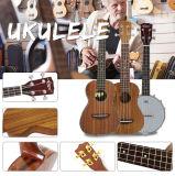 Violon électrique d'instruments de musique de violon de guitare