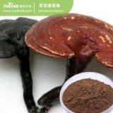 Extracto de hongo Reishi