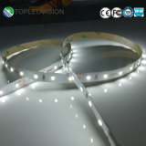 Tira de luz LED SMD 2835 150LED/5m 12V Color blanco cálido