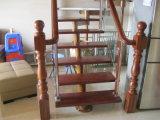 Nuevo estilo de la casa hacia las escaleras de madera cubierta con banda de rodadura y escalera de baranda de vidrio