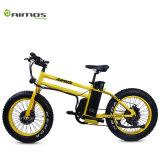20*4.0 두 배 모터 14.5ah 48V 750W 뚱뚱한 타이어 전기 자전거