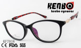 High Quality PC Optical Glasses This FDA Kf7018