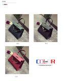 方法学生かばんのバッグレディーハンドバッグのメッセンジャー袋のショルダー・バッグのハンドバッグ