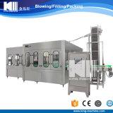 Venta caliente automática máquina de llenado de botellas de PET con Ce y ISO