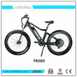 "Cnebikes Competitive Advantage Cheap Price 26 "" Conceited person Draws Electric Bike"