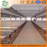 シードのAppleの温室のための農業の温室の移動可能なSeedbed