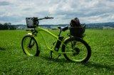Bicicleta elétrica do pneu gordo grande do disconto