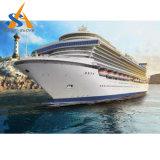500-1000 nave del transbordo rodado de los pasajeros