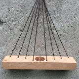 Organización natural de la flor de Hangng de madera de haya con el tubo de cristal