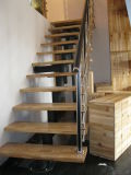 Escaliers droits de type neuf de Chambre avec l'escalier en bois d'intérieur de pêche à la traîne de semelle et en verre