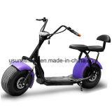 安い1500Wブラシレスモーターセリウムが付いている電気Harlyのスクーター