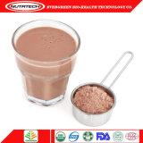 Großhandelsnahrung-Molkeprotein-Isolat-Goldaktie-Puder-Schokoladen-Aroma