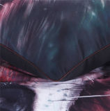 3D Afgedrukte Beddegoed van de Polyester van het Beddegoed van de Wolf Vastgestelde