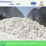 Heiße Verkäufe rieben Kalziumkarbonat in China