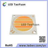 28*28/F23,5 COB chip de LED de luz LED 30W