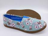 余暇の注入のズック靴の女性(FZL822-13)のための平らな慰めの靴