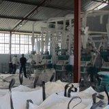 Machine 50t de minoterie de maïs par jour