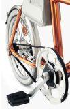 Vélo électrique urbain intelligent de pouvoir vert de 2017 Pedelec avec le bâti d'aluminium de 20 pouces