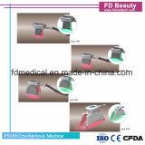 Vette het Bevriezen van het Vermageringsdieet van het Lichaam van Coolsulpting Cryolipolysis van de bevordering Machine