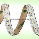 24V 140LEDs/M SMD2835&Nbsp; 6000k Cool&Nbsp; Weißer LED-Farbband-Streifen