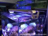18W Regulável LED tanque do aquário luz com Romet ou Botão