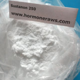 Sustanon 250 Sustanon 테스토스테론 Enanthate 스테로이드 분말