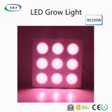 Los Alto-Lúmenes 9X200W LED crecen ligeros para las plantas médicas