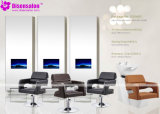 Popular de haute qualité Salon Meubles Shampooing président Salon Barber (de P2040C)