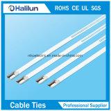 Attaches à câble en acier inoxydable non revêtue Échelle Type de serrure Multi Barb