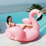 Раздувной поплавок заплывания фламингоа единорога лебедя, плавая пол