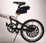 쉬운 개구리 유형 전기 자전거 건전지 24V10ah/36V10ah를 전송하십시오