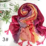 Les couleurs ont graduellement changé le châle peint à la main avec l'écharpe frangée de mode