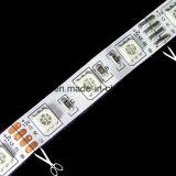 Striscia di SMD5050 60LEDs/M LED con Ce RoHS