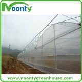 Tente de matériel agricole / plastique commercial avec système de refroidissement