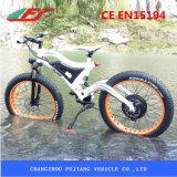 Montaña gorda china Ebike del neumático del fabricante 48V